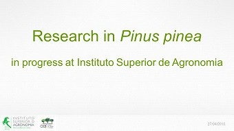 PINEA project -presentation-2015-04-27